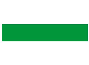 vercelli logo